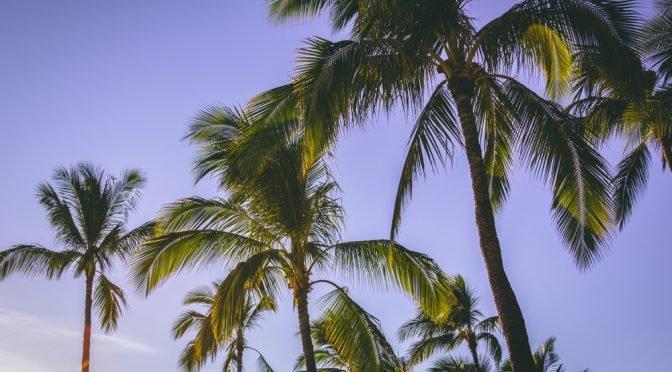 Hawaje – tygiel kulturowy w raju. Wywiad! :)